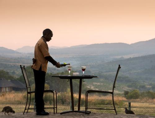 África do Sul, da vida selvagem às grandes cidades