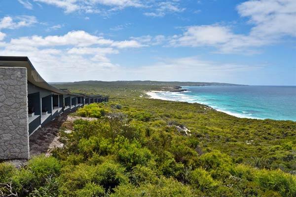 Kangaroo Island – O singular Galápagos australiano